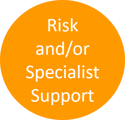 Risk specialist support